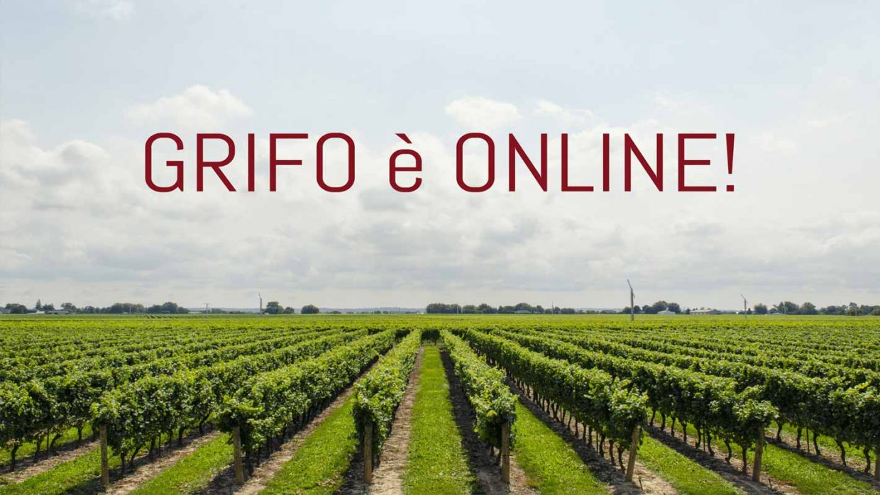 Grifo updates itself