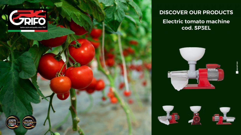 Tomato: the perfect ingredient!