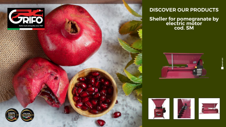 The pomegranate jam!